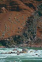 Dory<br /> Hance Rapid<br /> Grand Canyon National Park<br /> Colorado Plateau,  Arizona