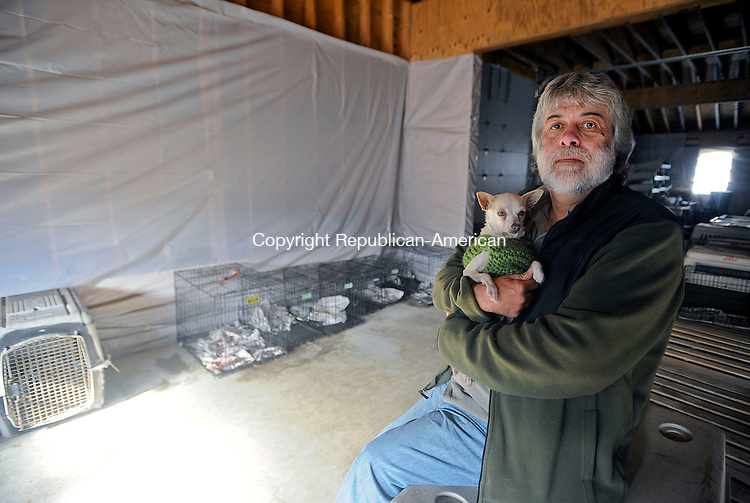 """BETHLEHEM, CT,  NOVEMBER 16, 2012-  111612JS09- Fred Acker sits in his empty shelter in Bethlehem on Friday with a rescue dog named """"Millie"""", a four year-old Chihuahua who was rescued from Bridgeport. Acker will appear at a hearing Monday over custody of his rescue dogs that were seized from the allegedly under-heated shelter last week.Jim Shannon Republican-American"""