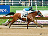 Treasured Moments winning at Delaware Park racetrack on 7/7/14