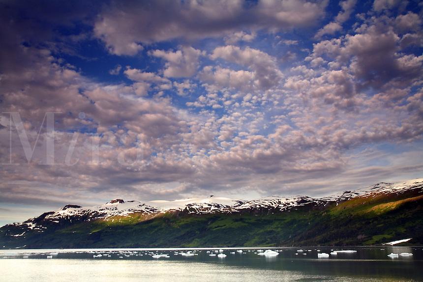 Icebergs from Harriman Glacier, Harriman Fiord, Prince William Sound, Chugach National Forest, Alaska.