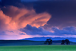 Alpenglow on storm clouds at sunset over green pastures near Tassajara, Contra Costa County, CALIFORNIA