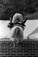 Pix:Michael Steele/SWpix...Show Jumping. Windsor Horse Show, 1989...COPYRIGHT PICTURE>>SIMON WILKINSON..Windsor Horse Show.