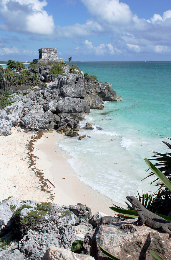 Mayan ruins at Tulum Mexico overlooking beach with iguana in foreground