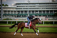 LOUISVILLE, KY - MAY 03: Salty, owned by Gary Barber, Beccari Racing Stable LLC, and Chester Prince and trained by Mark E. Casse, exercises in preparation for the Kentucky Oaks at Churchill Downs on May 03, 2017 in Louisville, Kentucky. (Photo by Alex Evers/Eclipse Sportswire/Getty Images)