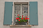 Window with blue shudders, red flowers, and hand made lace curtains in Bondo, a Swiss Bregaglia Valley town in the Graubunden Canton