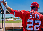 29 February 2020: Washington Nationals left fielder Juan Soto signs autographs  in the dugout prior to a Spring Training game against the St. Louis Cardinals at Roger Dean Stadium in Jupiter, Florida. The Cardinals defeated the Nationals 6-3 in Grapefruit League play. Mandatory Credit: Ed Wolfstein Photo *** RAW (NEF) Image File Available ***