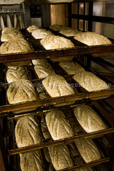 Seeded loaves of artisan bread dough, waiting to be baked at a commercial bakery.