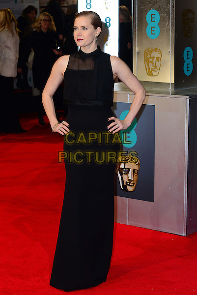 LONDON, ENGLAND - FEBRUARY 16: Amy Adams attends EE British Academy Film Awards (BAFTAs) at Royal Opera House, Covent Garden, on February 16, 2014, in London, England.  <br /> CAP/JOR<br /> &copy;Nils Jorgensen/Capital Pictures