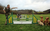 FAO JANET TOMLINSON, DAILY MAIL PICTURE DESK<br />Pictured: Mark Thompson with dogs at the assault course Wednesday 23 November 2016<br />Re: The Dog House in the village of Talog, Carmarthenshire, Wales, UK