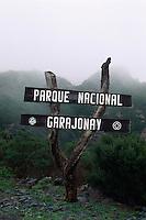 Spanien, Kanarische Inseln, Gomera, Naturpark Garjonay