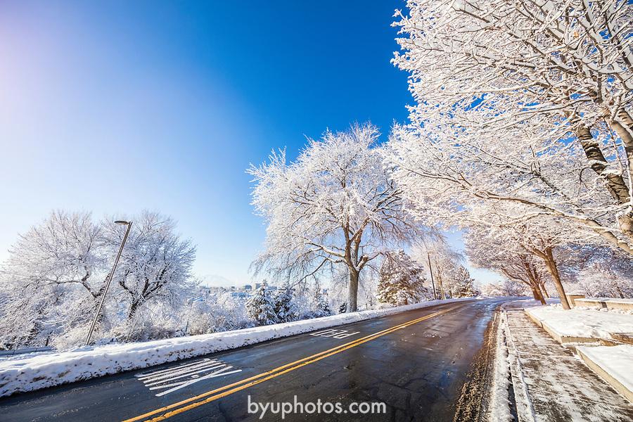 1701-04 GCS Snow_0018<br /> <br /> 1701-04 GCS Snow<br /> <br /> December 9, 2016<br /> <br /> Photography by Nate Edwards/BYU<br /> <br /> © BYU PHOTO 2016<br /> All Rights Reserved<br /> photo@byu.edu  (801)422-7322
