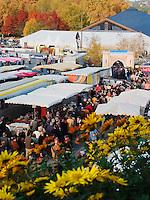La foire du Livre de Brive, qui a lieu chaque annee, debut novembre, est la premiere foire du livre hors de Paris (en France)..Les visiteurs font la queue entre les etales des commercants du marche.