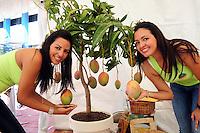 Festival del mango en Bani Provincia Previa al sir del país, donde se muestra todas las variedades del producto en el país y la manera como se produce y empaca para su comercialización en el país y el extranjero