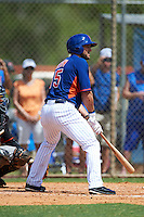 New York Mets left fielder Tim Tebow (15) at bat during an Instructional League game against the Miami Marlins on September 29, 2016 at the Port St. Lucie Training Complex in Port St. Lucie, Florida.  (Mike Janes/Four Seam Images)
