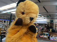 """BNPS.co.uk (01202 558833)<br /> Pic: Hansons/BNPS<br /> <br /> Pictured: The Original Sooty Puppet at Hansons' Derbyshire saleroom.<br /> <br /> An iconic old Sooty TV puppet which Harry Corbett gave to a friend has emerged for sale for £1,200.<br /> <br /> The children's show inventor Harry Corbett gifted it to biology teacher Paul Mouncey, from Comrie, Perthshire, Scotland, in the mid-1970s.<br /> <br /> His daughter Tina Stewart, a veterinary receptionist from Dunblane, is now selling the hand puppet with Hanson's Auctioneers, of Etwall, Derbys.<br /> <br /> Mrs Stewart, a veterinary receptionist from Dunblane, Scotland, said: """"We took Sooty along with us and after the show met Richard - who immediately new our puppet was an original."""