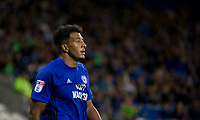 Nathaniel Mendez-Laing of Cardiff City during the Sky Bet Championship match between Cardiff City and Sheffield United at Cardiff City Stadium, Cardiff, Wales on 15 August 2017. Photo by Mark  Hawkins / PRiME Media Images.