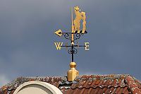 General view of the weather vane during Warwickshire CCC vs Essex CCC, Specsavers County Championship Division 1 Cricket at Edgbaston Stadium on 12th September 2017
