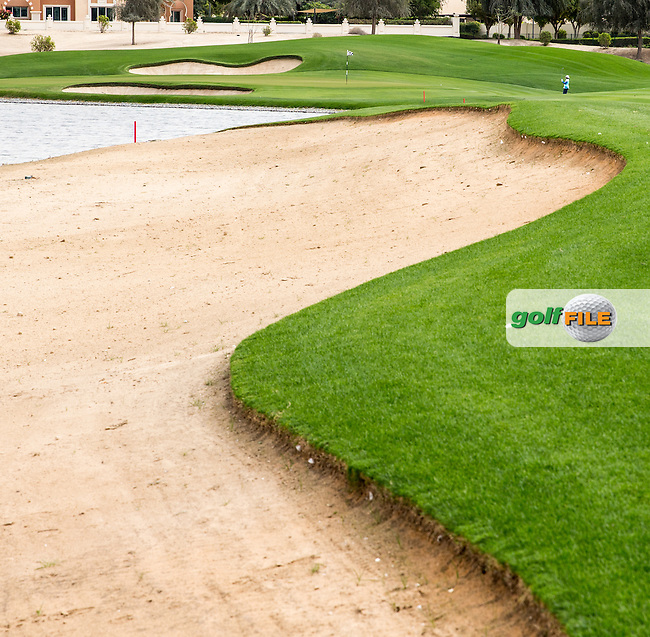 Pond edge and approach to the 7th green at The Els Club , Dubai, United Arab Emirates.  28/01/2016. Picture: Golffile   David Lloyd<br /> <br /> All photos usage must carry mandatory copyright credit (&copy; Golffile   David Lloyd)