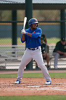 Chicago Cubs right fielder Robert Garcia (24) at bat during a Minor League Spring Training game against the Oakland Athletics at Sloan Park on March 13, 2018 in Mesa, Arizona. (Zachary Lucy/Four Seam Images)