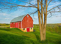 Iowa County, Wisconsin: Red barn, with two track under blue sky in spring