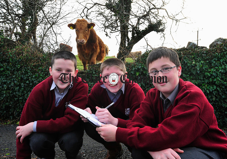 Padraig Kennelly, Gary Sexton and Eoin Hennessy from Ennistymon C.B.S. Photograph by Declan Monaghan