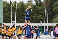 Mark Bright (Captain) of London Scottish collects during s line out during the Greene King IPA Championship match between London Scottish Football Club and Ealing Trailfinders at Richmond Athletic Ground, Richmond, United Kingdom on 8 September 2018. Photo by David Horn.