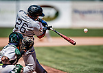 19 July 2018: Staten Island Yankee infielder Andres Chaparro at bat against the Vermont Lake Monsters at Centennial Field in Burlington, Vermont. The Lake Monsters edged out the Yankees 2-1 in NY Penn League action. Mandatory Credit: Ed Wolfstein Photo *** RAW (NEF) Image File Available ***