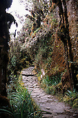 Urubamba Valley, Peru. Inca mountain roadway on the Inca Trail to Machu Picchu.
