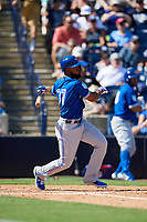 Toronto Blue Jays left fielder Teoscar Hernandez (37) follows through on a swing during a Grapefruit League Spring Training game against the New York Yankees on February 25, 2019 at George M. Steinbrenner Field in Tampa, Florida.  Yankees defeated the Blue Jays 3-0.  (Mike Janes/Four Seam Images)