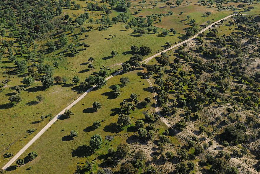 Aerial image<br /> Campanarios de Az&aacute;ba reserve,  Salamanca Region, Castilla y Le&oacute;n, Spain