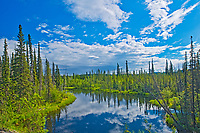 Along a river, Dempster HIghway, Yukon, Canada