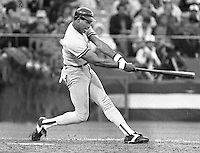 Yankee slugger Dave Windfield during the 1984 All-Star game in San Francisco. (photo/Ron Riesterer)