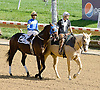 Lord Justice before The DTHA Governors Day Stakes at Delaware Park on 10/20/12