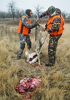 Hunting white tail deer with Jake Jacobs of Weaver (cq), Richard Watkins (cq), a guide with Trophies Plus Outfitters and John Taranto, a writer with Outdoor Life Magazine near Alzada, Montana, Friday, November 9, 2012.<br /> <br /> <br /> Photo by Matt Nager