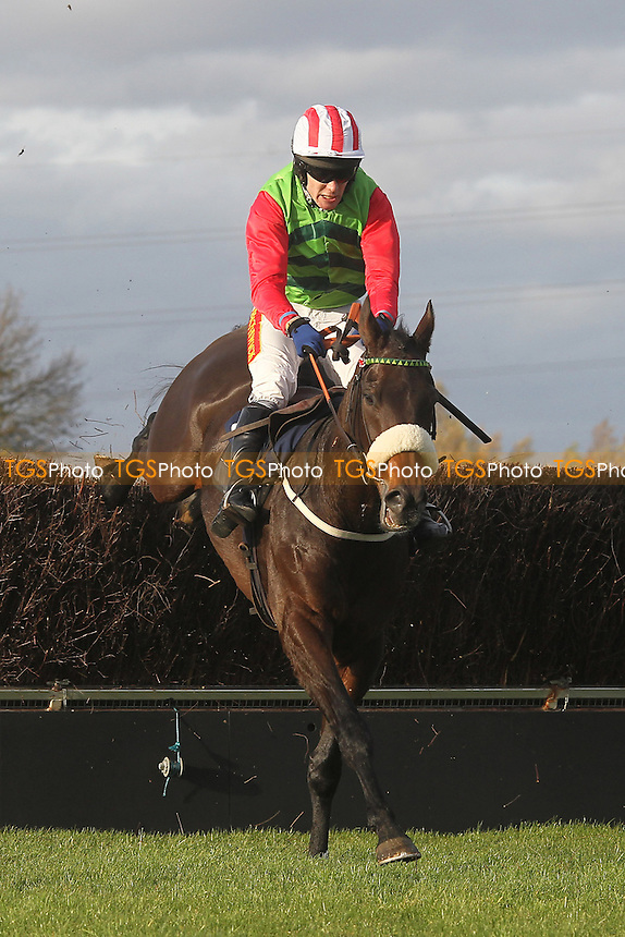Race winner Honest John ridden by Tom Scudamore in jumping action during the TurfTV Novices Handicap Chase - Horse Racing at Huntingdon Racecourse, Brampton, Cambridgeshire - 13/11/12 - MANDATORY CREDIT: Gavin Ellis/TGSPHOTO - Self billing applies where appropriate - 0845 094 6026 - contact@tgsphoto.co.uk - NO UNPAID USE.