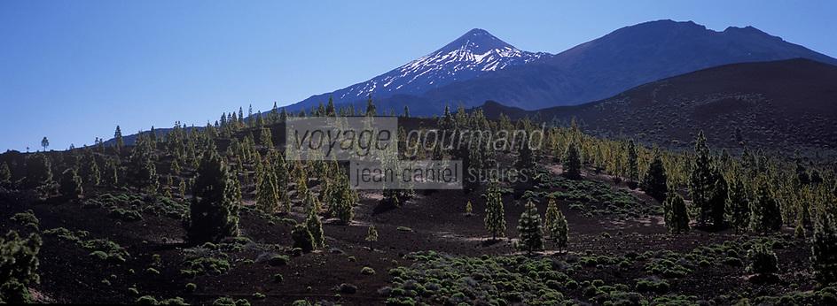 Europe/Espagne/Iles Canaries/Tenerife/Parc National de Téide/Pic du Teide:3718 m