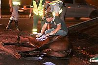 SÃO PAULO,SP, 04.06.2017 - ACIDENTE-SP - Um veiculo atropelou um cavalo na rodovia Anchieta Km 10 sentido capital causando lentidão na noite dessa quinta-feira no bairro do Ipiranga região sul de São Paulo. O animal teve que ser sacrificado, o proprietario do cavalo fugiu. (Foto: Carlos Pessuto/Brazil Photo Press)