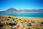 Miscanti Lagoon in Atacama desert, Chile