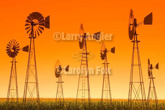 Downey Well Company windmill collection, Merna, Nebraska: Woodmanse, Baker Monitor, Aermotor, Dempster, F&W Star Zepher