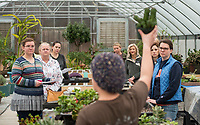 NWA Democrat-Gazette/BEN GOFF @NWABENGOFF<br /> Participants listen as Megan Lankford, Botanical Garden of the Ozarks horticulture supervisor, talks about caring for succulent plants Saturday, Jan. 12, 2019, during a 'Succulent Make and Take' class at Botanical Garden of the Ozarks in Fayetteville. Participants learned how to care for the water-conserving plants native to arid climates and made their own arrangement to take home.