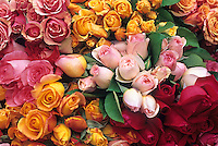 Bunches of cut roses in flower market