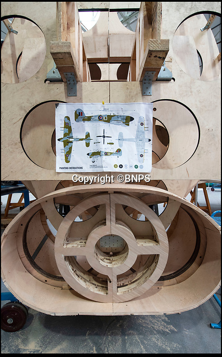 BNPS.co.uk (01202 558833)<br /> Pic: PhilYeomans/BNPS<br /> <br /> The aircraft has been built using the original plans.<br /> <br /> Super-sized Typhoon heading for Dorset...<br /> <br /> Apprentices working for QinetiQ at Boscome Down in Wiltshire are constructing a super-sized model of the Hawker Typhoon to celebrate 75th anniversary of the Battle of Normandy.<br /> <br /> The huge 4x scale model of the rocket carrying fighter will be placed on a hillside overlooking the Chalke Valley History Festival that opens next week. <br /> <br /> The fighter bomber known as 'Tiffy' by its pilots played a key role attacking German troops, tanks and trains during the battle for Normandy, disrupting Nazi attempts to resupply their beleagured forces. <br /> <br /> There are no airworthy Typhoon's still flying today, although the Typhoon Preservation Trust has plans to restore one to flying condition by 2020.
