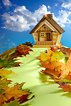 Wooden house on a hill covered with fallen autumn leaves under blue cloudy sky