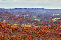 Late-season autumn colors in Patrick County, located in the Blue Ridge mountains of far southern Virginia