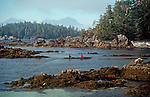 Sea kayakers, Barkley Sound, Broken Islands, Pacific Rim National Park, Vancouver Island, British Columbia, Canada, Clark Island,