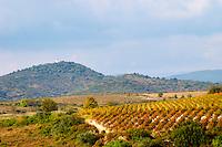 Domaine Borie la Vitarèle Causses et Veyran St Chinian. Languedoc. France. Europe. Vineyards.