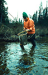 Fly fishing for trout Canada<br />