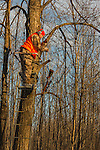 isconsin hunter using rope to pull up his Browning X-Bolt in 300 WSM caliber