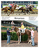 Riproarious winning at Delaware Park on 6/28/06