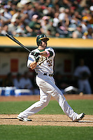 OAKLAND, CA - SEPTEMBER 15:  Jack Cust of the Oakland Athletics bats during the game against the Texas Rangers at the McAfee Coliseum in Oakland, California on September 15, 2007.  The Athletics defeated the Rangers 7-3.  Photo by Brad Mangin